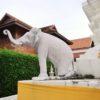 チェンマイ旧市街でゾウの仏塔を探し、ワット・ドゥアング・ディーに到着