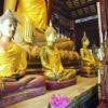 【タイ】歴史の重厚感!チェンマイ旧市街ワット パン・タオの魅力