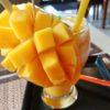 【タイ】チェンマイで絶対おすすめ!マンゴーが超美味いレストラン