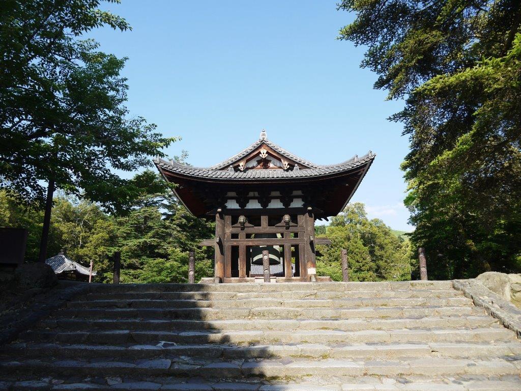 東大寺のホタル