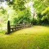 【和歌山】苔が美しい!神武天皇の兄、彦五瀬命が眠る竈山神社
