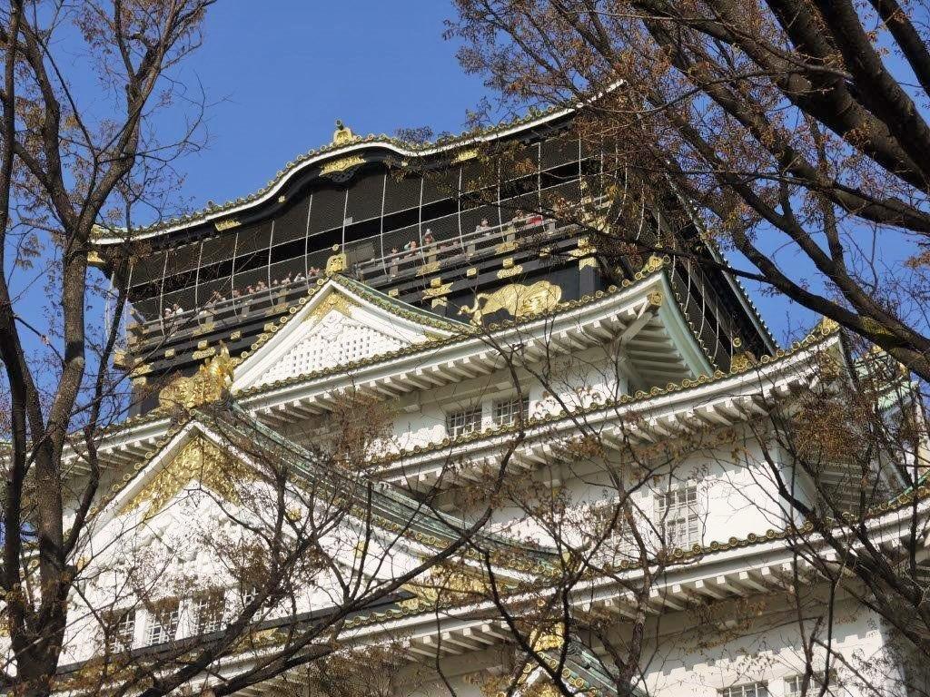 大阪城、桜
