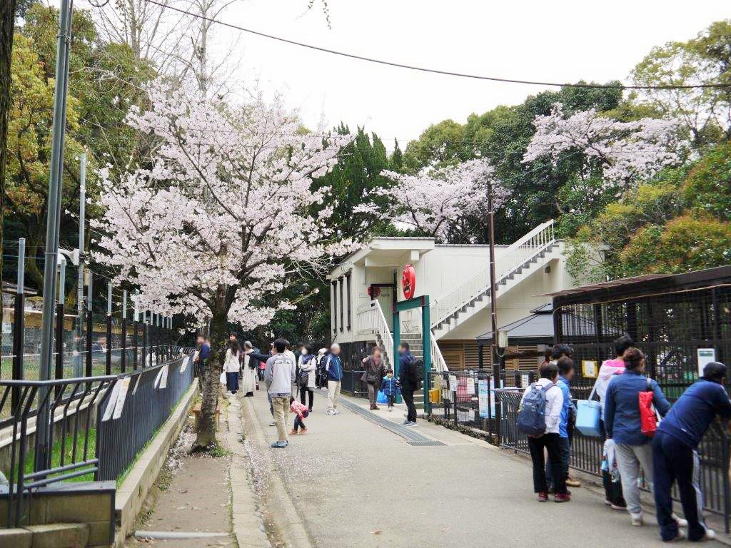 池田市立五月山動物園