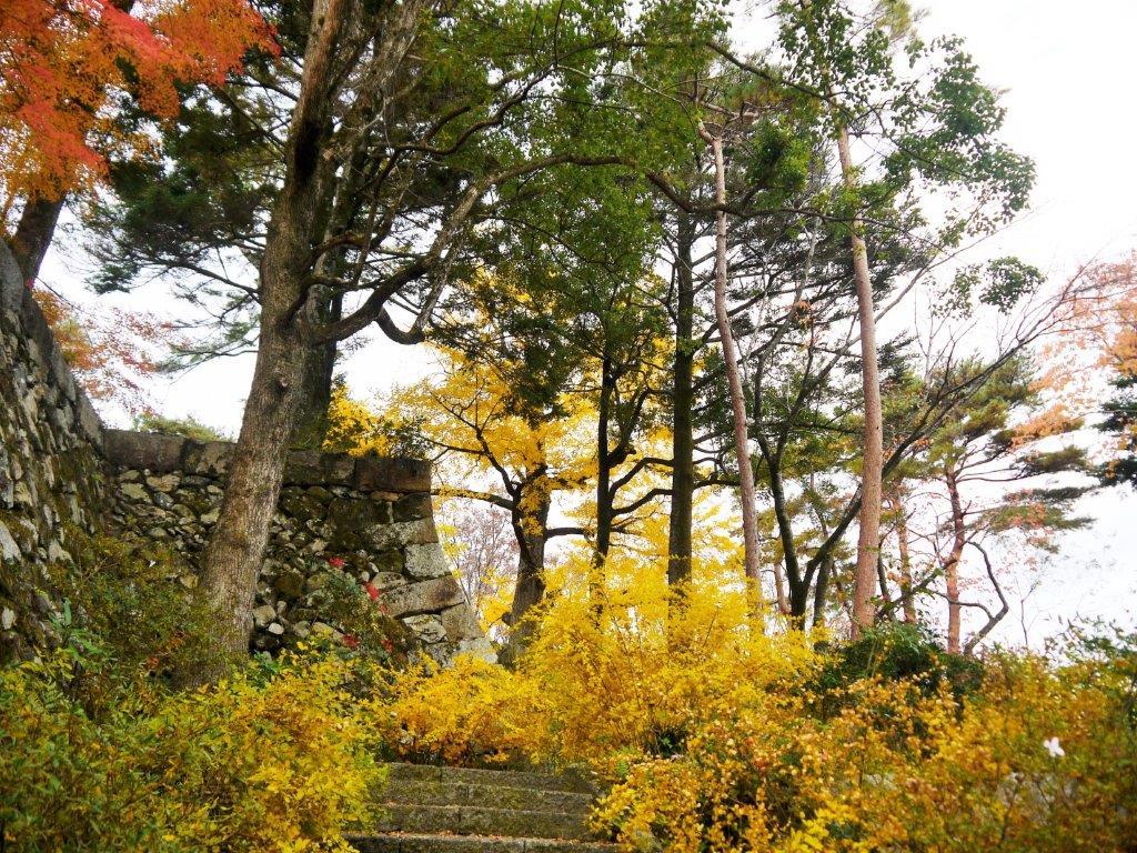 亀山城跡、紅葉