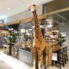 【大阪駅】「カフェ ズーアドベンチャー」で珈琲を1杯無料で飲む方法