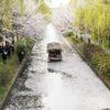 【京都】坂本龍馬ゆかりの寺田屋周辺!伏見の濠川を走る十石舟の桜景色
