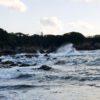 【和歌山】潮岬の見える展望台から海岸に降りると流木がゴロゴロと…